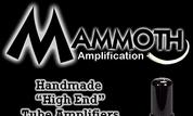 MAMMOTH AMPLIFICATION